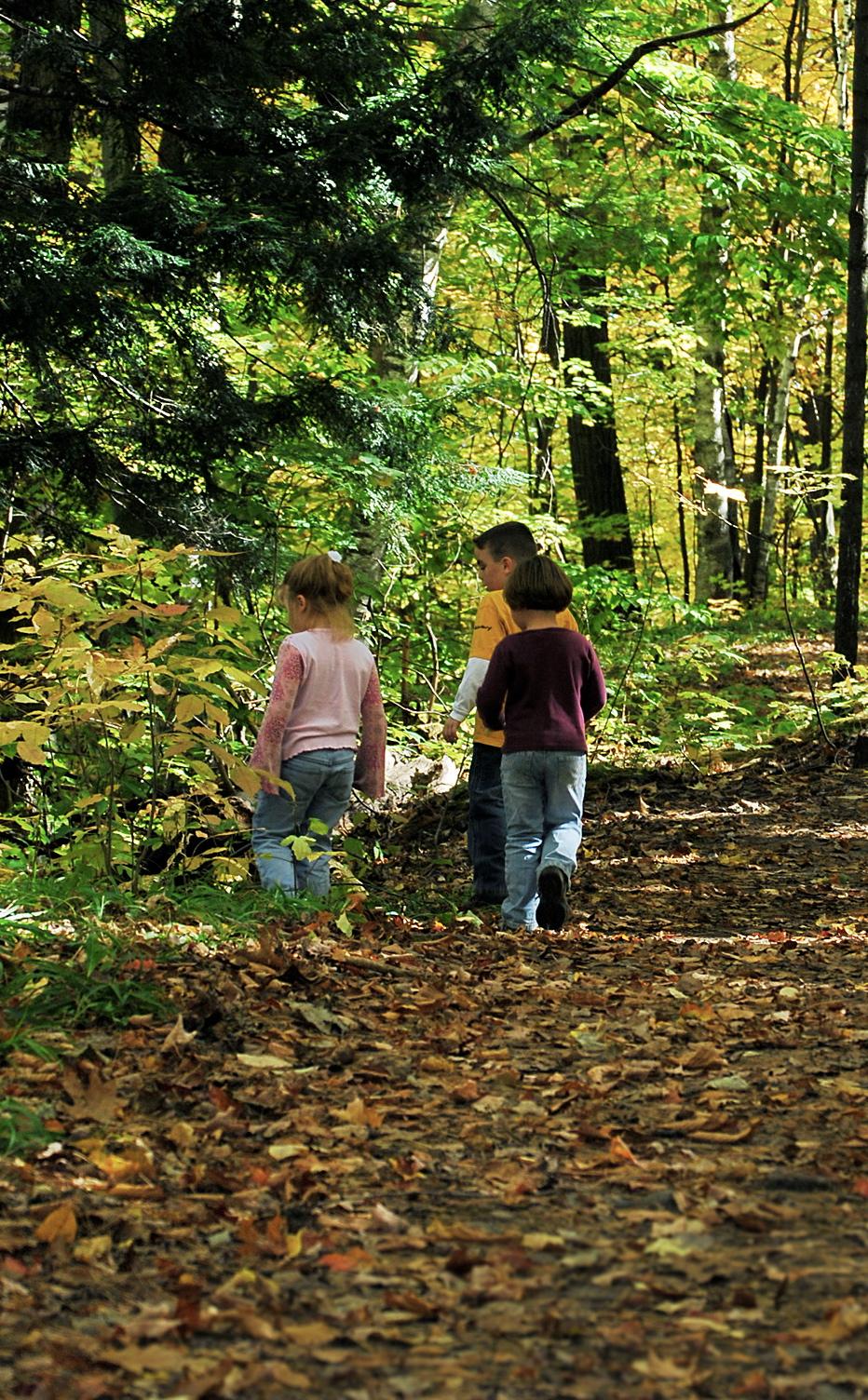 nature education teach children learning